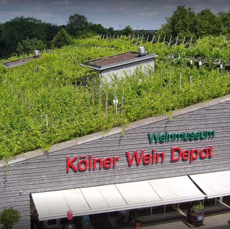 Vineyard on roof