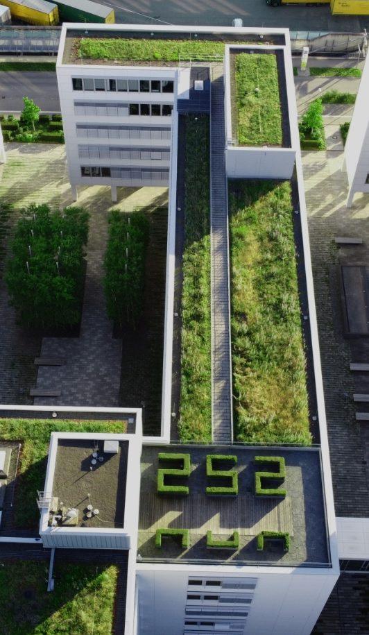 Germay VS: USA Green Roofs
