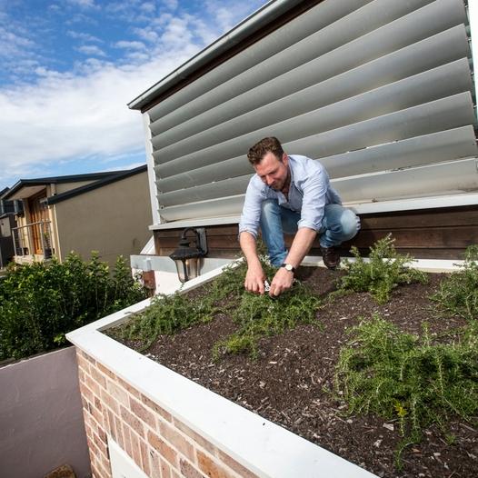 Green Roofs Australia sydney