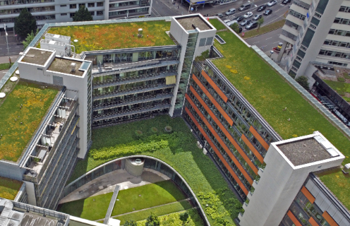 Crafting Green Roofs over 40 years