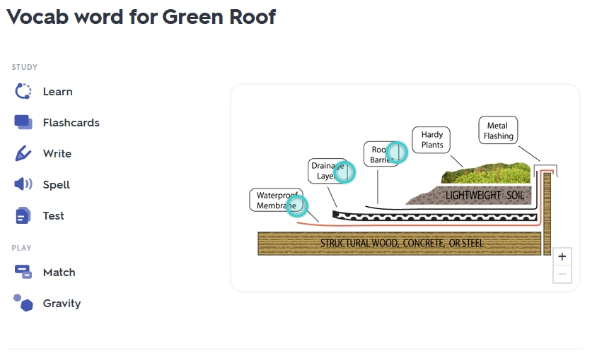 GREEN ROOF VOCABULARY